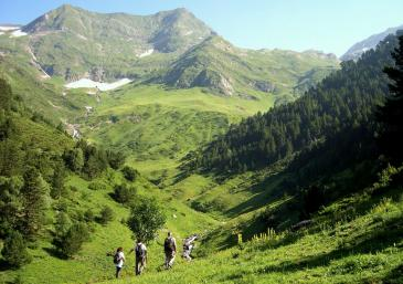 Upper Pyrenees Natural Park